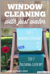 Easy Window & Glass Cleaning with E-Cloth & Water