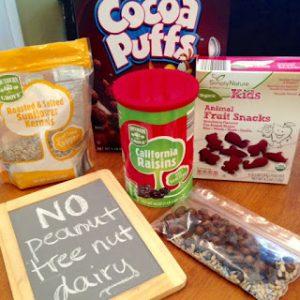 School Lunches & Snacks ~ Peanut-Free, Nut-Free, Dairy-Free Ideas