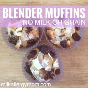 Grain-Free Blender Muffins