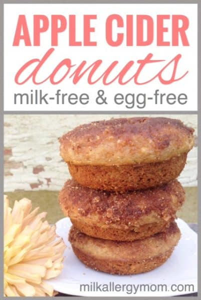Dairy and Egg Free Apple Cider Donuts