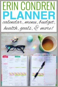 Streamlining Life: Erin Condren Planner