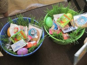 Grow Your Own Easter Grass in 7 Days!