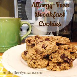 Allergy-Free Breakfast Cookies