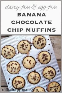 Banana Chocolate Chip Muffins {Dairy-Free & Egg-Free}