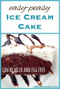 DIY  Ice Cream Cake {Dairy-Free & Egg-Free}
