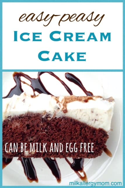 Diy ice cream cake milk free egg free for food allergy diy ice cream cake no milk or egg ccuart Images