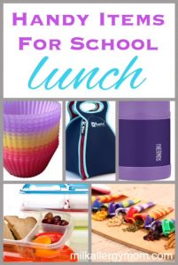 Handy Items for School Lunch