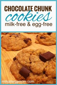 Chocolate Chip Cookies {Dairy-Free & Egg-Free}