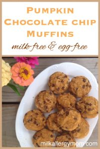 Pumpkin Chocolate Chip Muffins {Dairy-Free & Egg-Free}