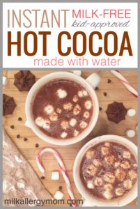 Instant Hot Chocolate with Water {Dairy-Free}
