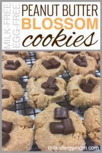 Peanut Butter Cookies {Dairy-Free & Egg-Free}