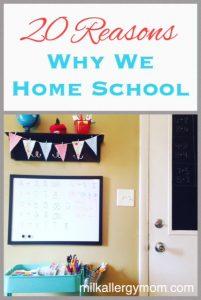 20 Reasons We Home School {With Food Allergies}