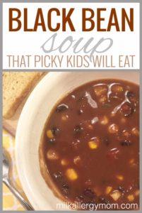 Dairy-Free Black Bean Soup