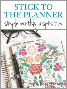 Stick to the Planner Subscription