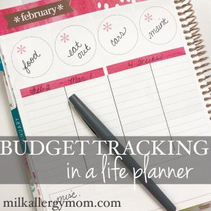 Using Every Page in My EC Planner ~ Budgets & More!