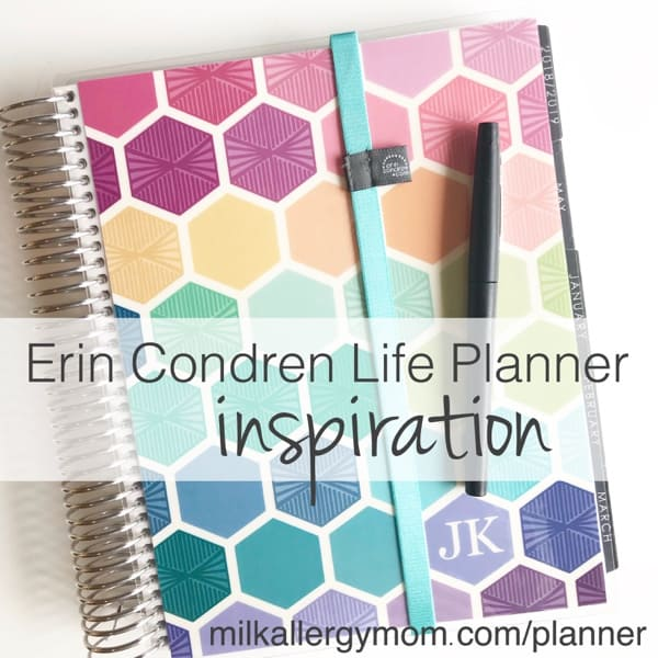 2019 Erin Condren Planner Tour Video: Neutral vs. Color