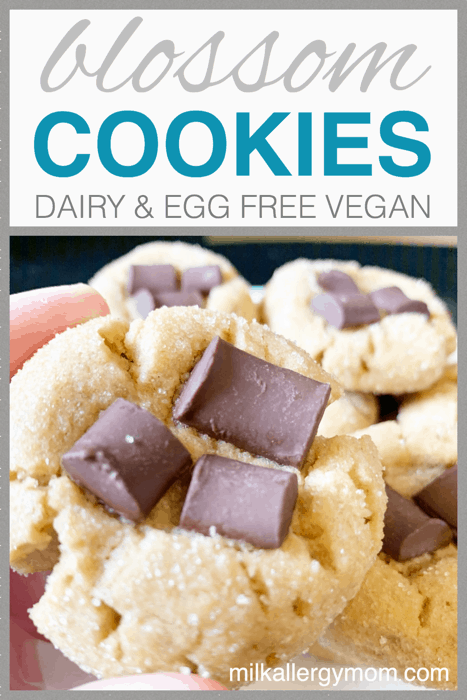 Vegan Peanut Butter Blossoms Cookies