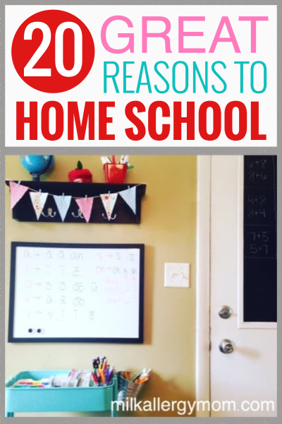 20 Great Reasons to Home School