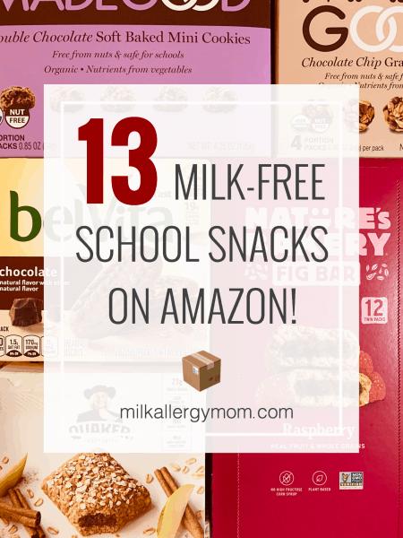 13 School Snacks Dairy-Free!