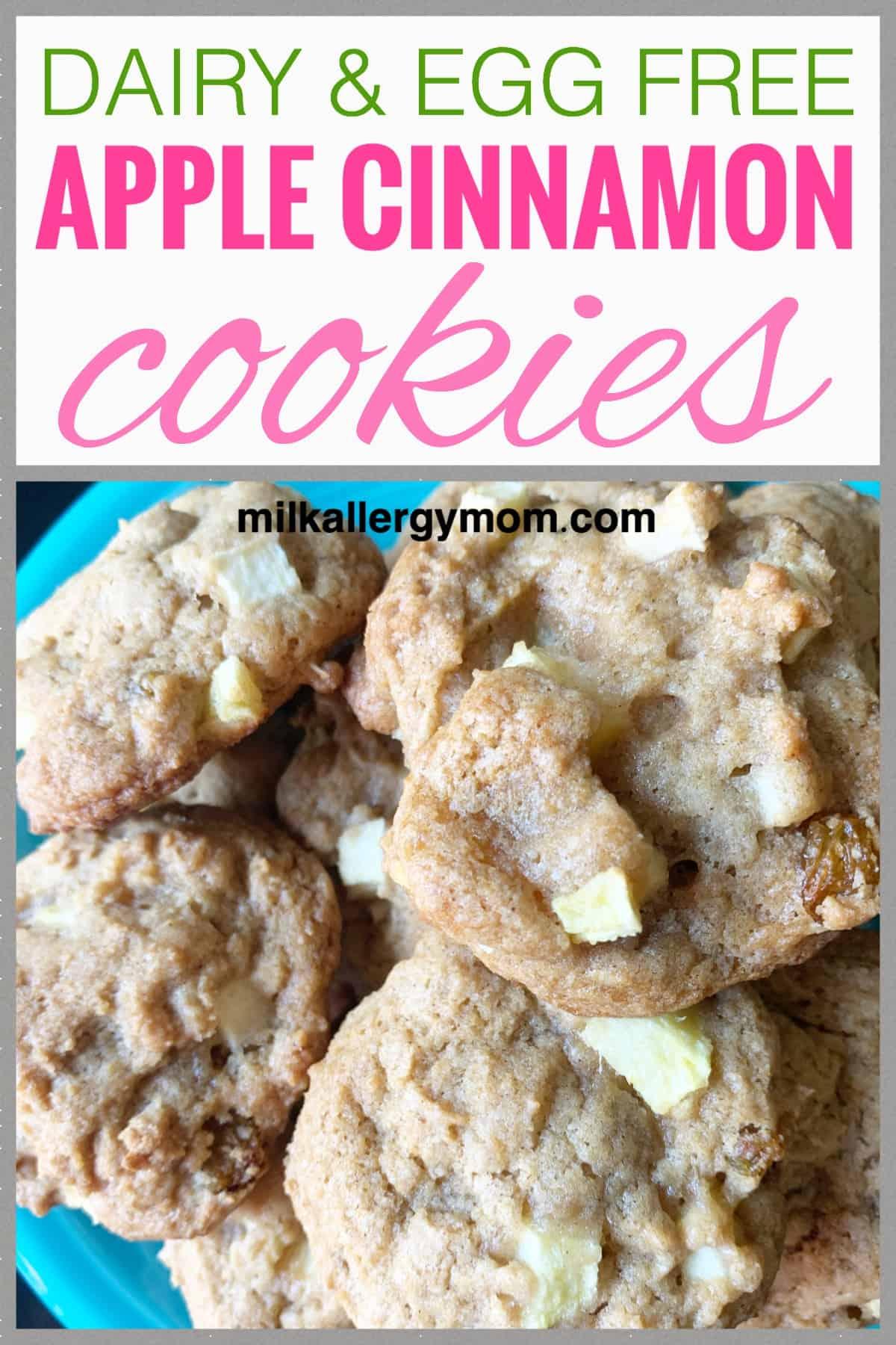 Apple Cinnamon Cookies Dairy & Egg Free