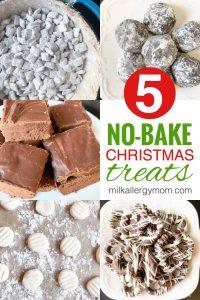 Dairy-Free No Bake Christmas Treats